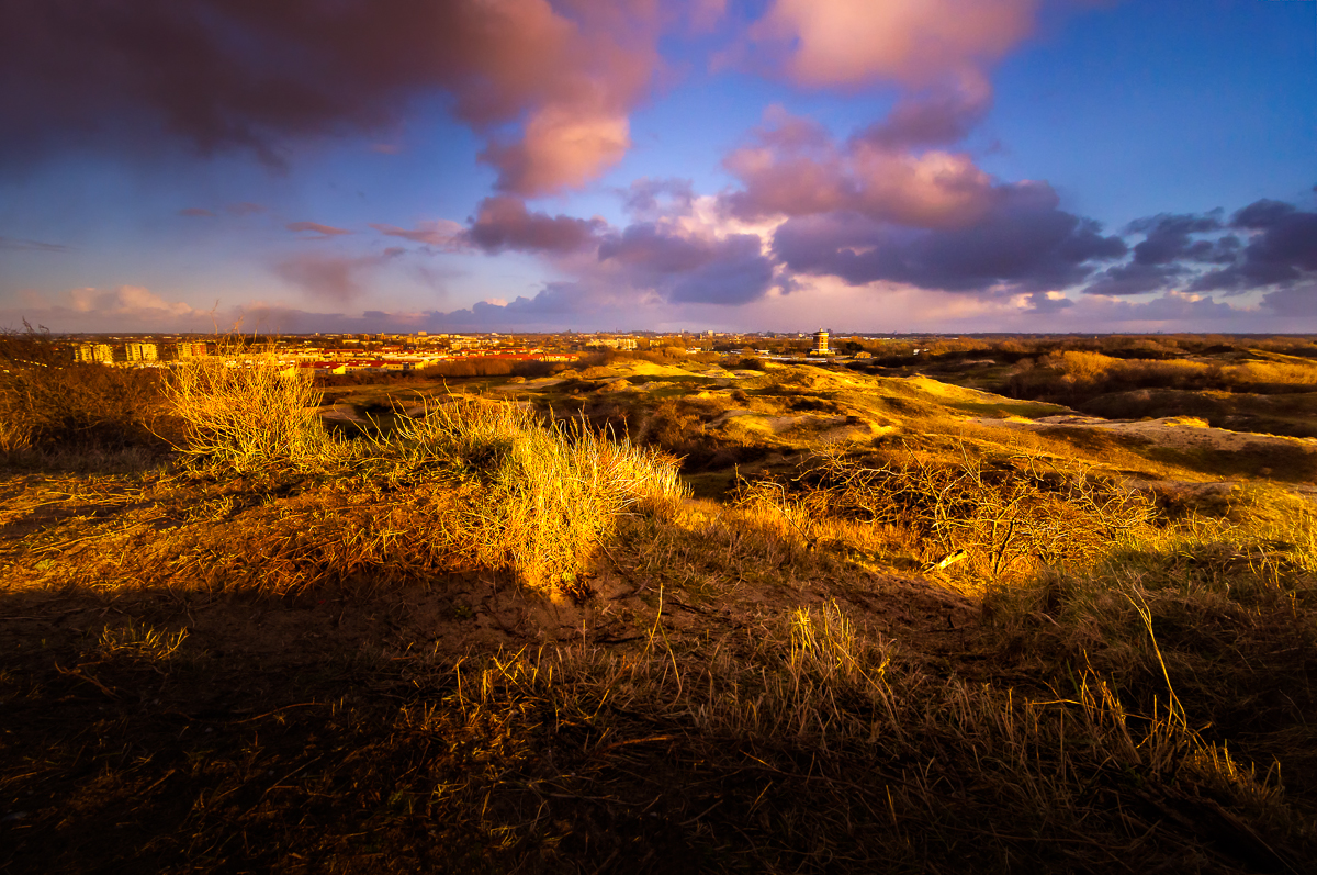 In the Dutch Mountains III - Martijn van der Nat 1/160th seconds, f11, ISO 200, 11 mm, 0.6 Formatt Hitech hard grad ND Circular Polariser and tripod Sunset in the Dunes of Katwijk, The Netherlands A little piece of 'wild' land in one of the most densely populated area's of the country. This image and others is featured in my Blogpost: http://www.martijnvandernat.nl/the-dunes-of-katwijk/