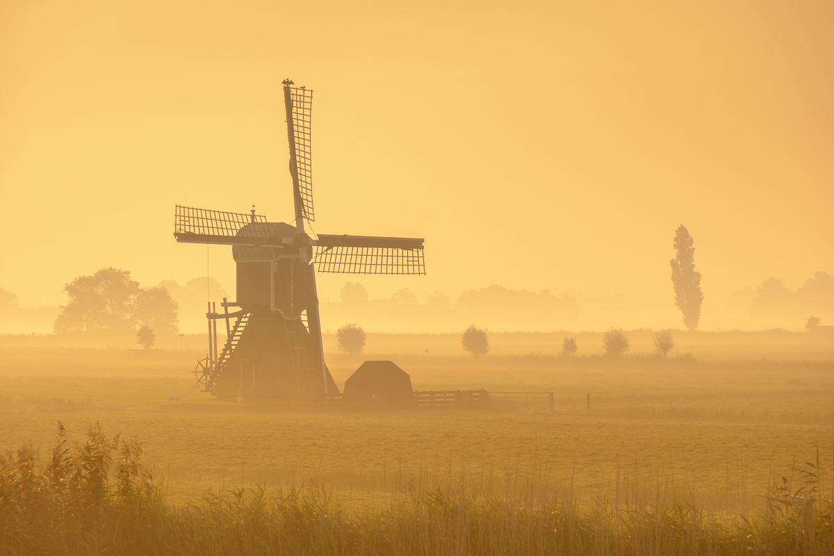 Golden Morning - Martijn van der Nat A lonely windmill in the foggy countryside. The sunlight gives everything a golden glow. This image is featured in my blog: http://www.martijnvandernat.nl/september-is-here/